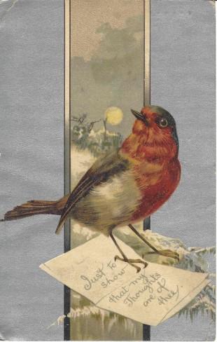 Red Bird A - Edited