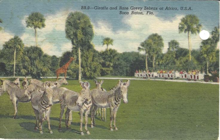 Africa USA 1