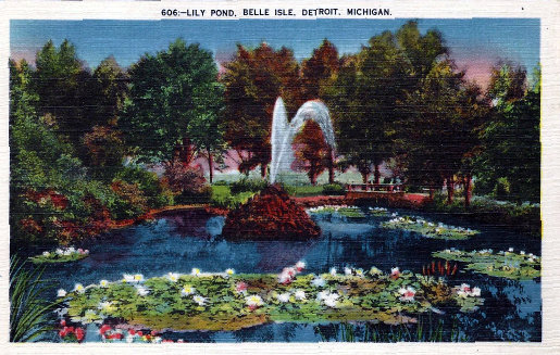 Lilly Pond Belle Isle